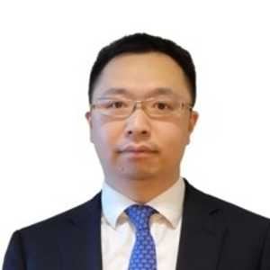 David Luo (Tax Partner at Grant Thornton)